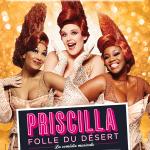 Priscilla sacrée «meilleure comédie musicale de l'année» par Le Parisien