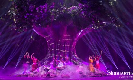 Filage de Siddhartha l'Opéra Rock au Dôme de Paris