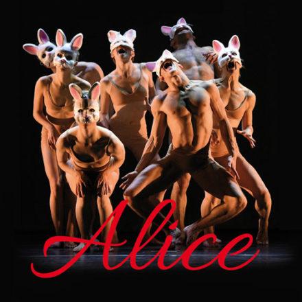Alice, Down the Rabbit Hole